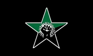 anarchogreen