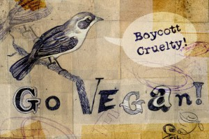 boycottcruelty